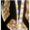 24V5050RGBW软灯条 12V1米72灯5050软灯条