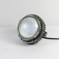 LED仓库防爆泛光灯 圆形隔爆式泛光灯DOD813