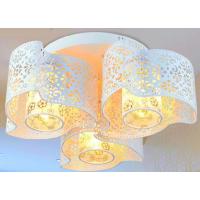 专业加工不锈钢、铁工艺灯饰罩及相关各种图案饰品蚀刻