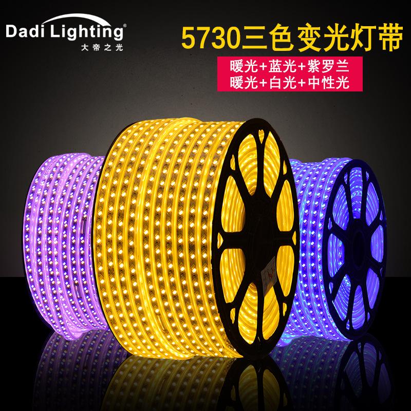 三色变光灯带 5730双排120珠暖加蓝铜线高压防水软灯条节日彩灯带