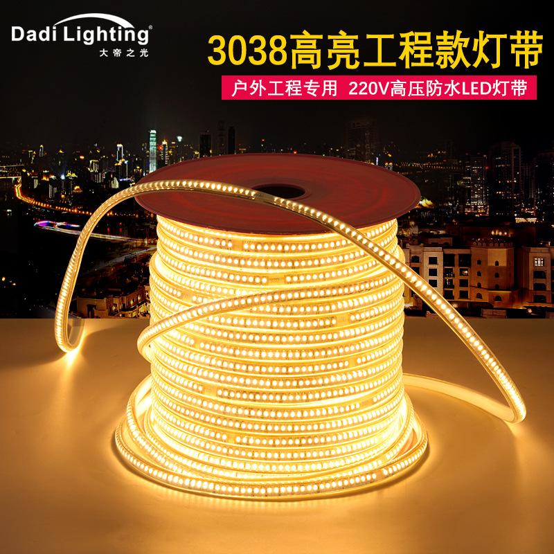 led灯带 高压3038超高亮工程款灯带144珠铜线220V弧面户外软灯条